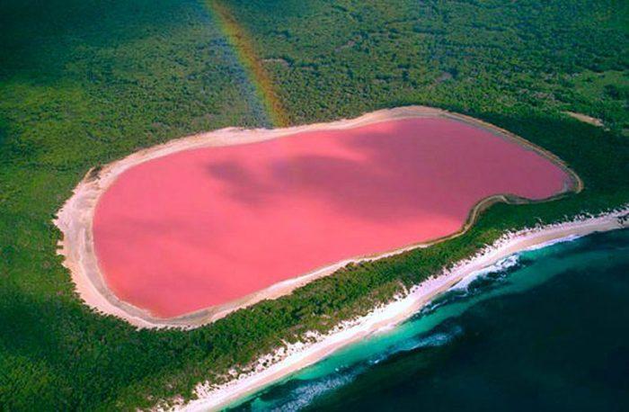 Danau Merah Muda Hillier