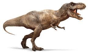 Tyranosaurus Rex jenis dinosaurus pemakan daging