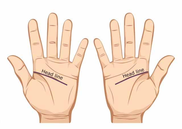Garis tangan utama - palmistri