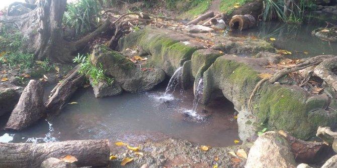 Hutan alas purwo - tempat angker di Indonesia