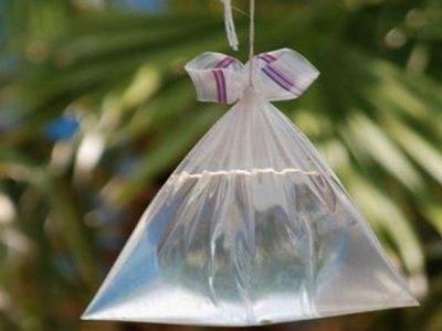 cara mengusir lalat dengan kantong plastik air