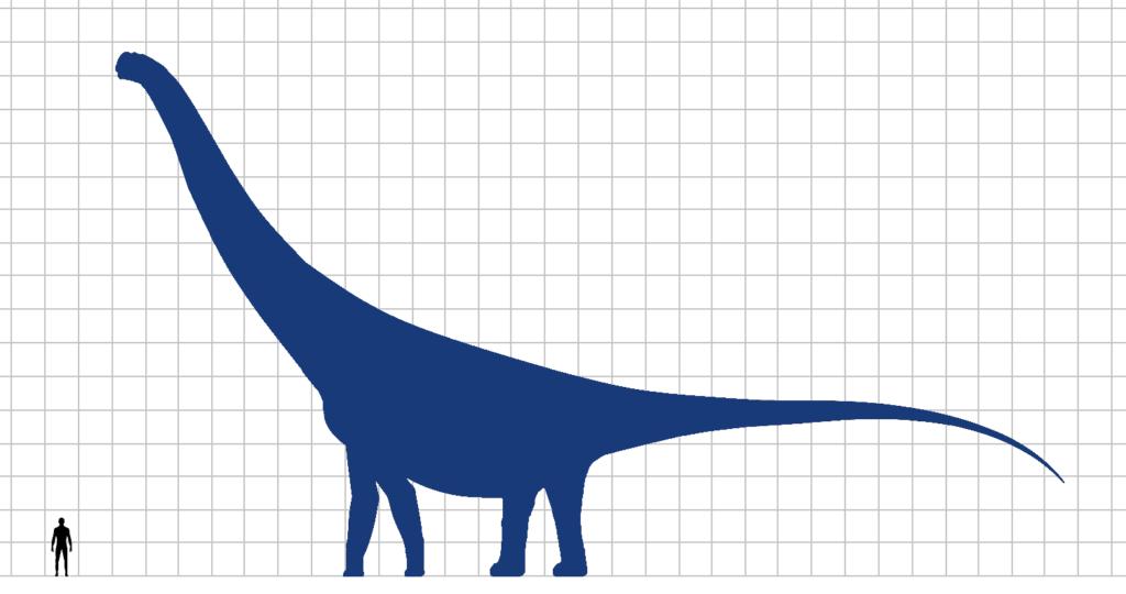 dinosaurus terbesar - argentinosaurus