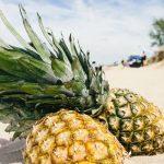khasiat buah nanas untuk kesehatan