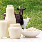 10 Manfaat Susu Kambing untuk Kesehatan yang Menakjubkan