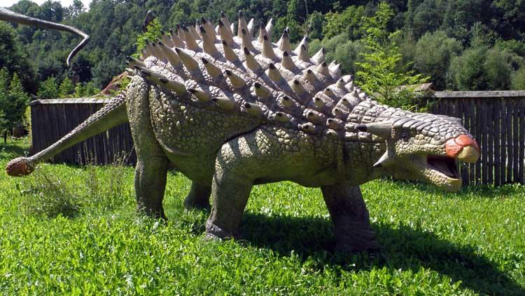 Dinosaurus herbivora - Ankylosaurus