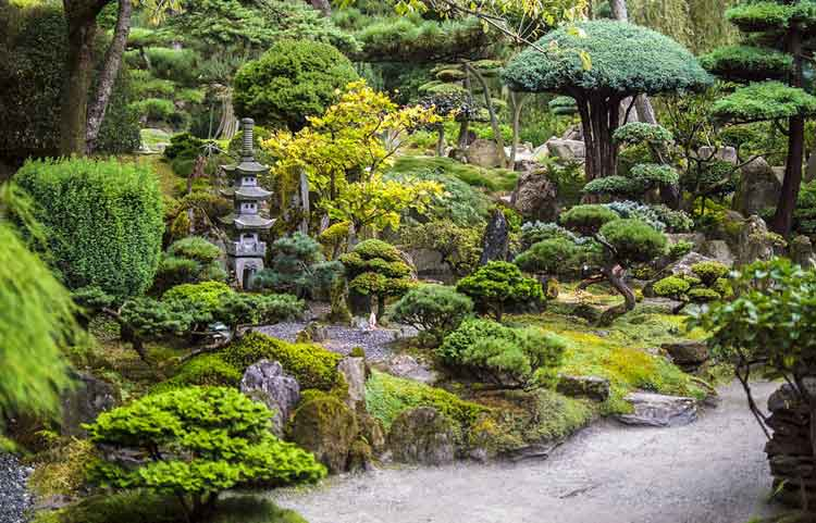 Taman Bergaya Jepang 4