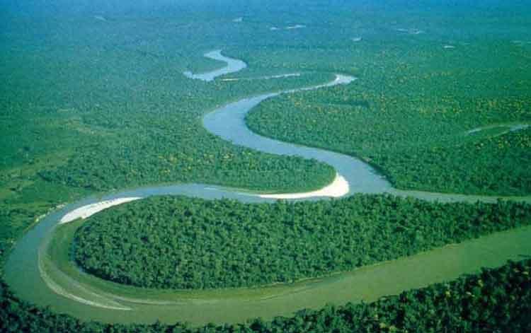 sungai terpanjang di dunia kedua amazon