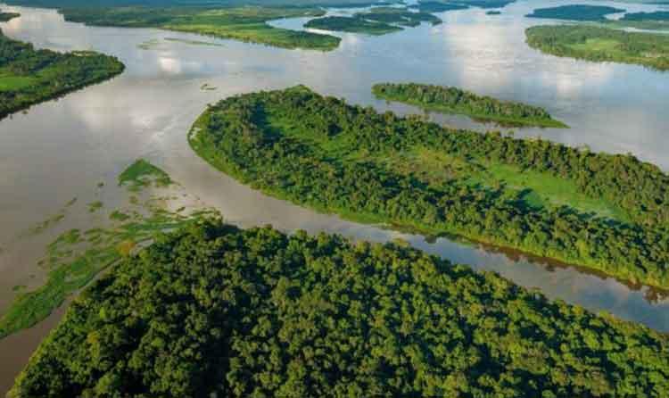sungai congo
