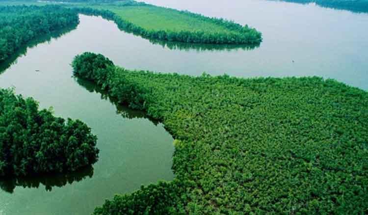 sungai niger