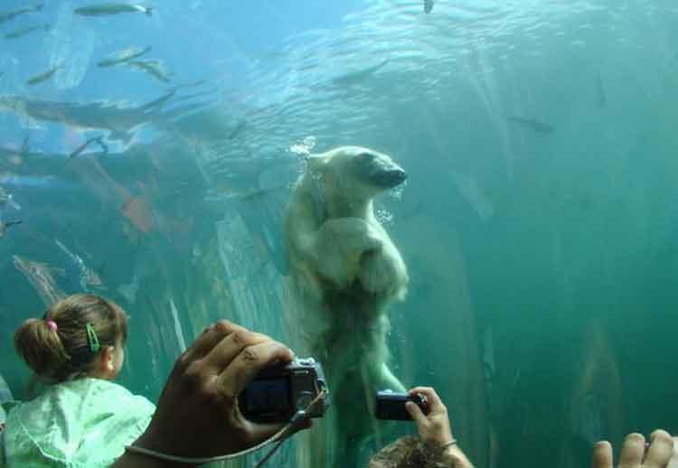 Kebun Binatang dan Akuarium Columbus