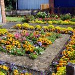 7 Cara Menata Taman Depan Rumah agar Terlihat Cantik