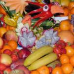 Ragam Macam Sumber Vitamin A Dalam Mendukung Perkembangan Anak